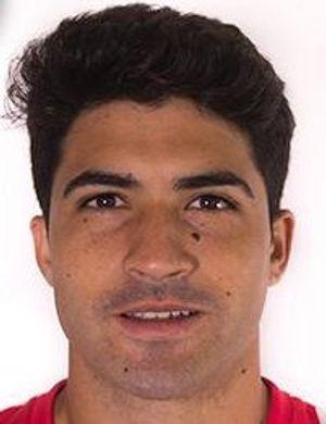 Nicolás Ibáñez
