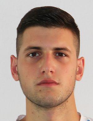 Vladan Vidakovic